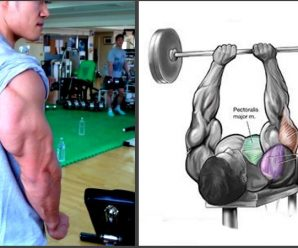triceps-booster-exercises