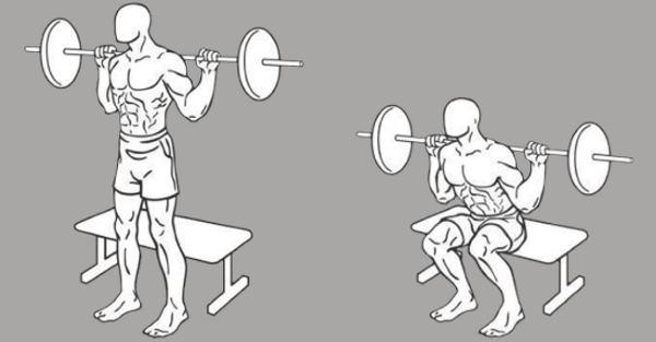 box-squats