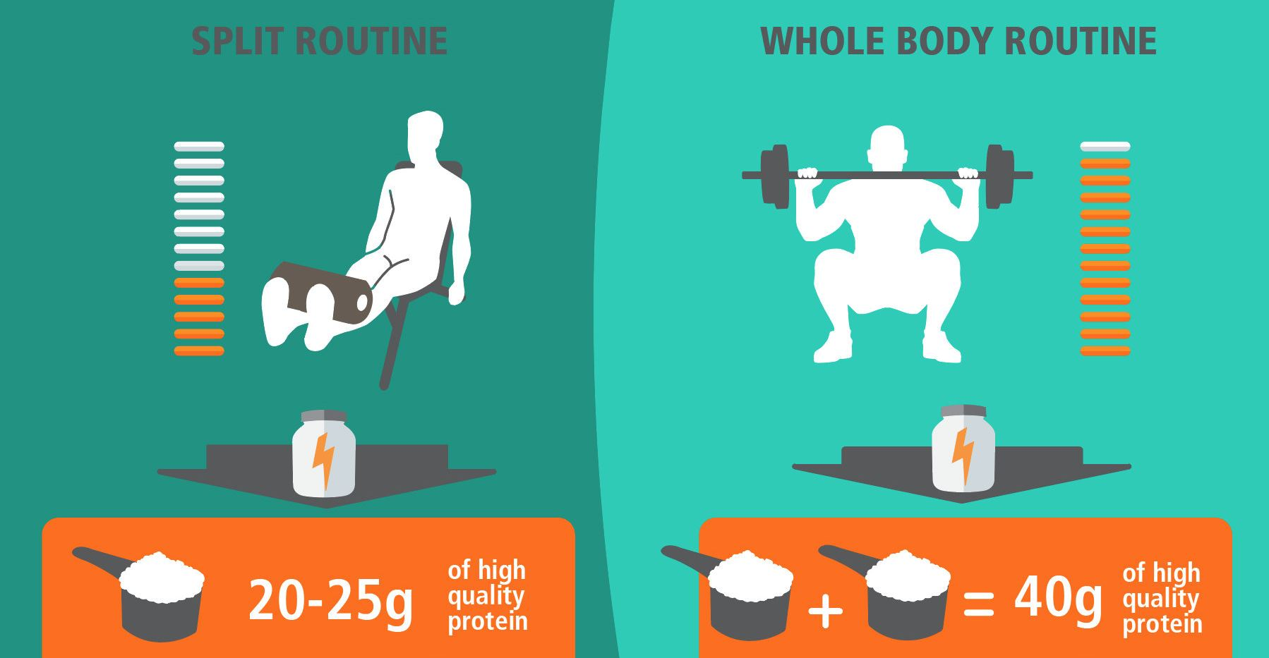 How Much Protein You Need After The Workout