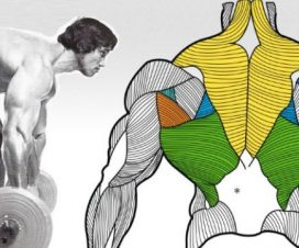 7-unique-ways-to-upgrade-your-rows-for-massive-gains-and-minimum-injury