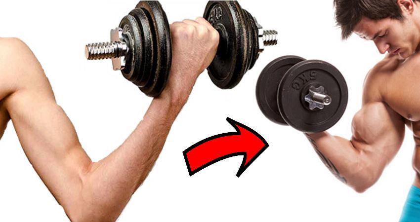 gain-muscle