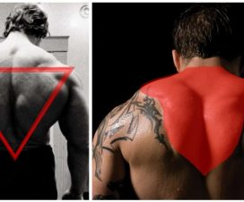 huge-back-and-traps-workout