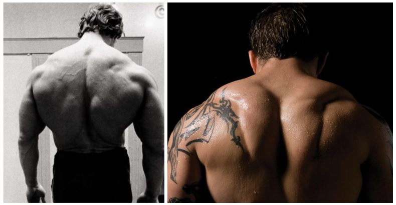 huge-back-and-traps