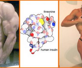 improve-insulin-sensitivity