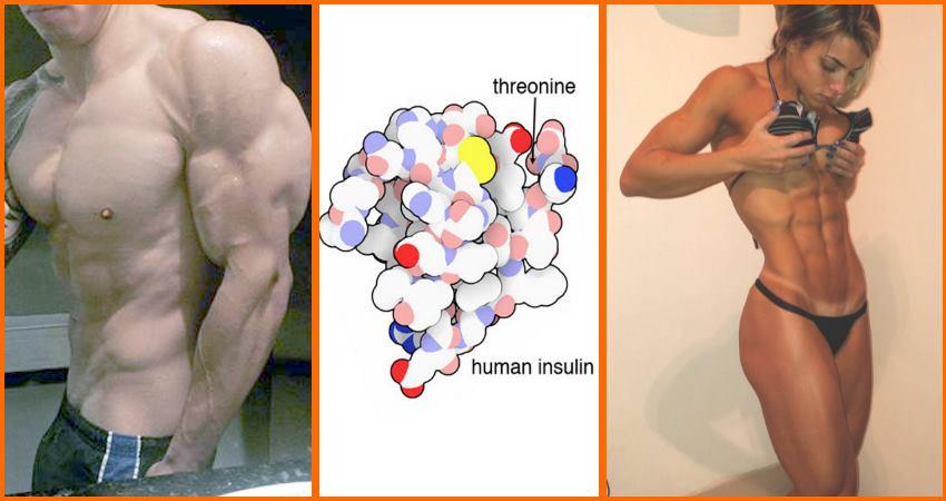 improve-insulin-sensitivity