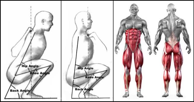 back-vs-front-squat