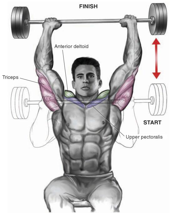 barbell-shoulder-press