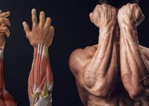 how-to-build-monster-forearms