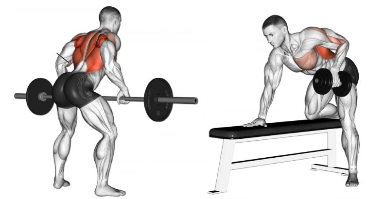 how-to-perform-barbell-dumbbell-bent-over-rows-with-proper-form