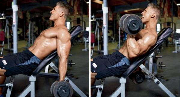 incline-dumbbell-curl