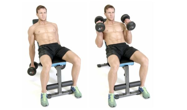 incline-hammer-curl