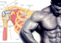 the-only-3-exercises-you-need-to-do-to-develop-monstrous-delts