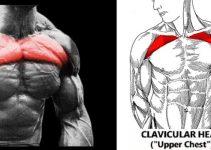 upper-chest