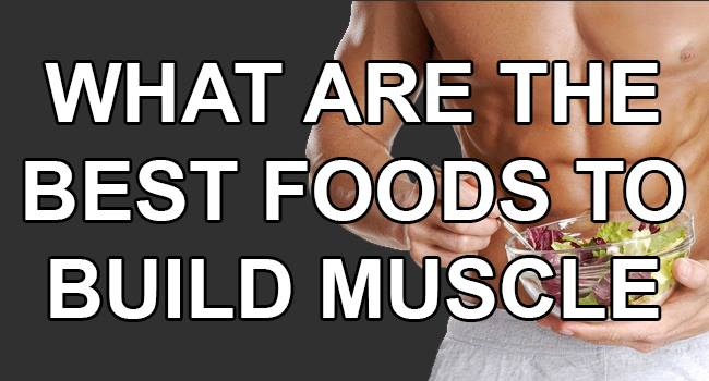 what-are-the-best-food-to-build-muscle