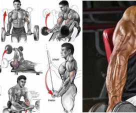 best-bicep-and-tricep-exercises-for-mass