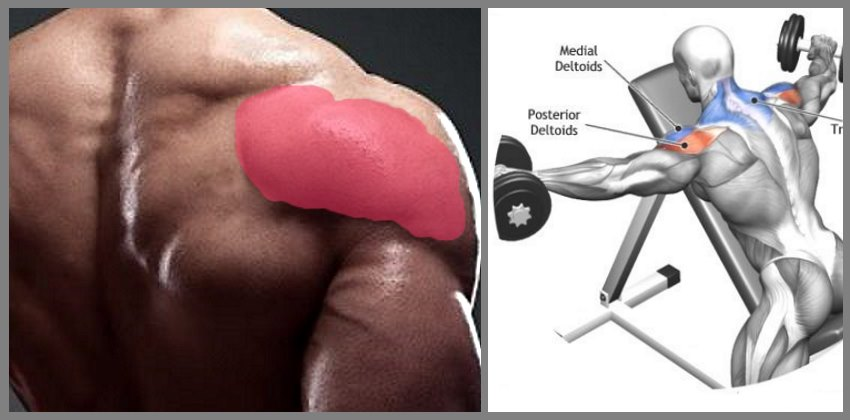 lying-rear-delt-lateral-raise