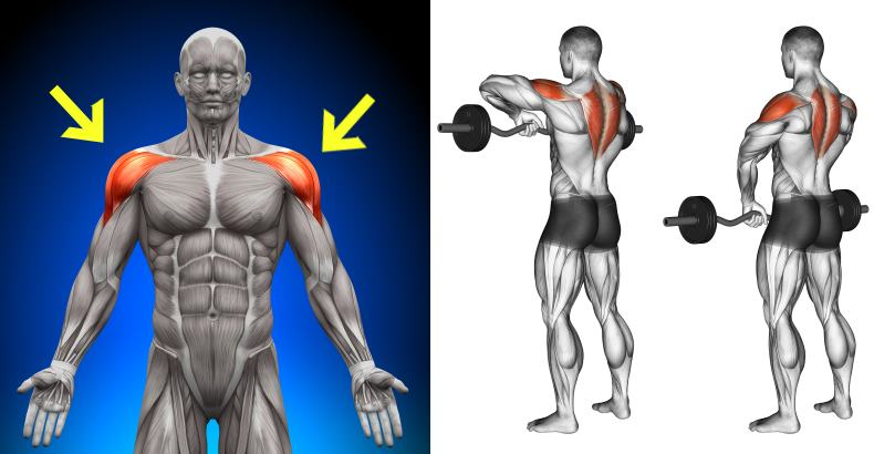 5-exercises-for-perfectly-symmetrical-shoulders