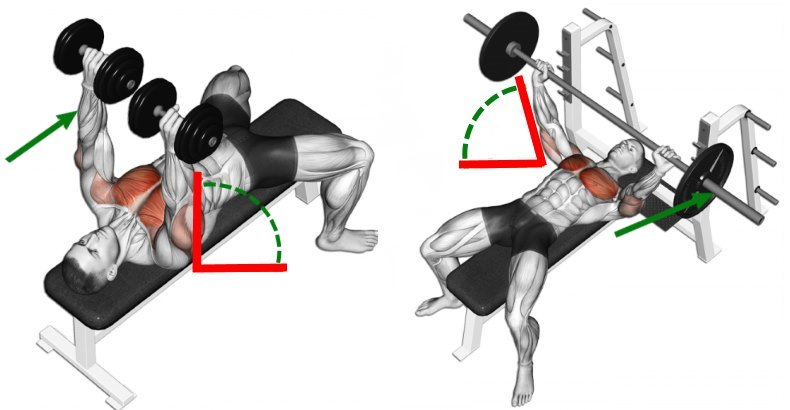 barbell-press-vs-dumbbell-press-for-chest