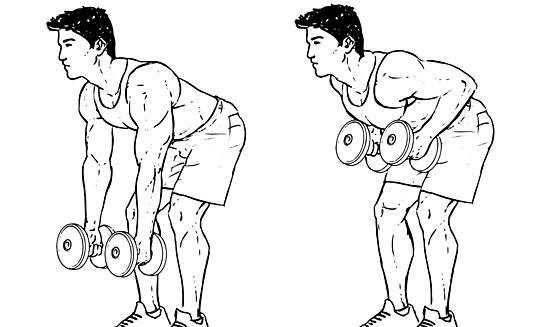 dumbbell-bent-over-row