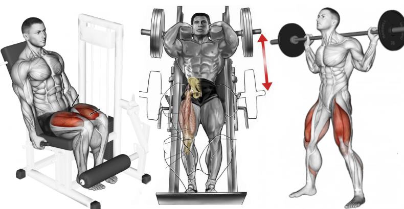 exercises-to-build-big-legs