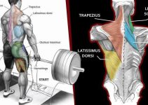 super-effective-back-exercises-you-are-not-doing