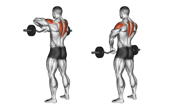 Image result for Upright Barbell Row