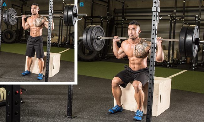 barbell-box-squat