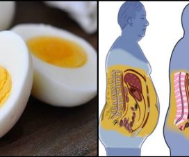 breakfast-ingredients-lose-fat