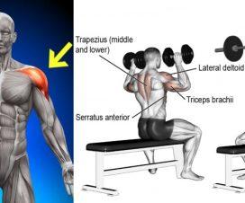 dumbbell-vs-barbell-shoulder-press-proper-technique-benefits
