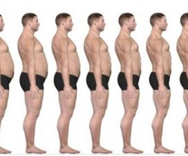 step-by-step-guide-to-fat-loss-in-eight-weeks