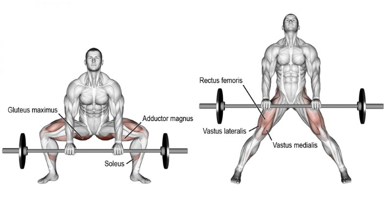 How To Master The Sumo Deadlift Fitness And Power