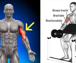 upgrade-your-biceps-workout-for-bigger-arms