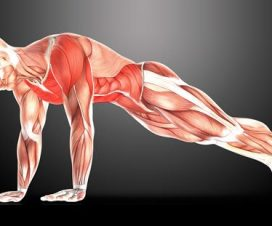 best-bodyweight-exercises-to-get-you-ripped