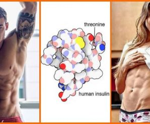 optimizing-insulin-sensitivity-for-muscle-gain-and-fat-loss