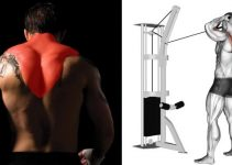 the-8-best-traps-exercises