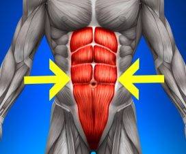 the-best-ab-exercises-according-to-science