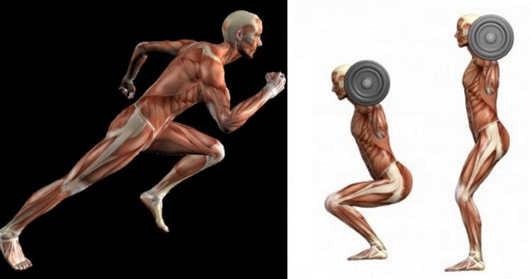 10-reasons-lifting-is-better-than-cardio