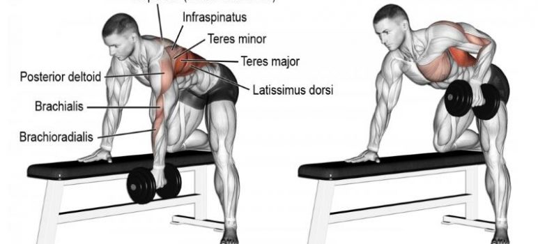 5-reasons-you-need-one-arm-dumbbell-row