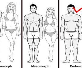 endomorph-diet