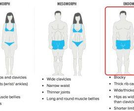 endomorph-diet-tips