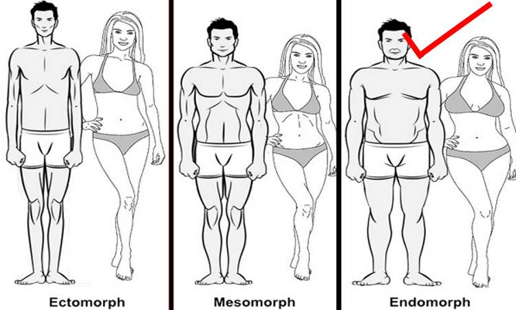 endomorph-diet