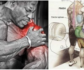 sore-muscle-growth