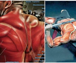 upper-body-mass-workout
