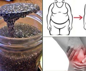 chia-seeds-nutrition