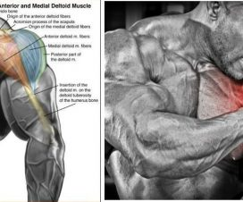 how-to-fix-shoulder-pain