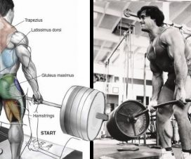 simple-deadlift-program