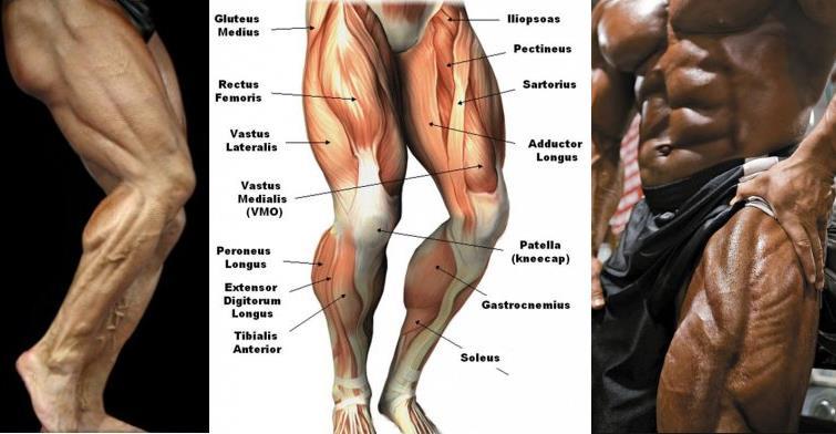 5-leg-training-mistakes