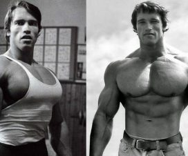 arnold-chest-workout