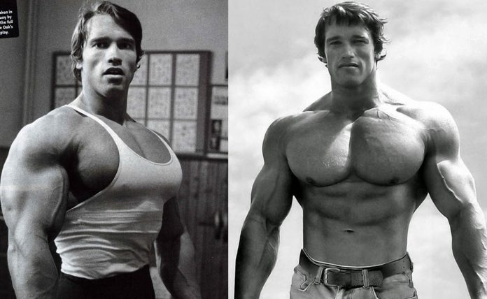 Arnold's Classic Chest Workout - Fitness and Power