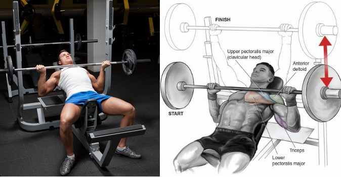 incline-barbell-bench-press-vs-reverse-grip-bench-press